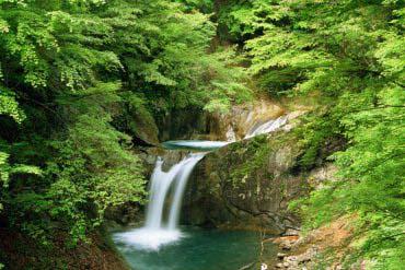 Nishizawa Valley(Yamanashi)