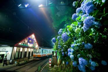 Hakone Tozan Railway(Hakone)