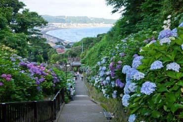 Yuigahama(Kamakura)