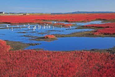 Lake Notoro(Other Areas of Hokkaido)