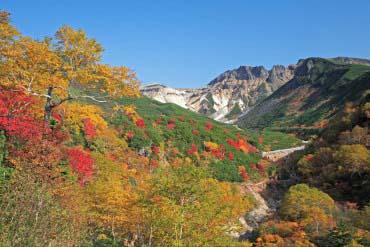 Furano(Furano, Biei, Sounkyo Gorge)