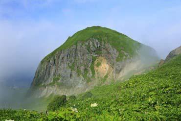 礼文岛(北海道的其他景区)