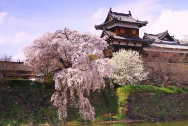 郡山城迹(奈良)