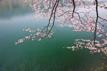 中綱湖(長野)