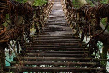奥祖谷藤蔓桥(德岛)