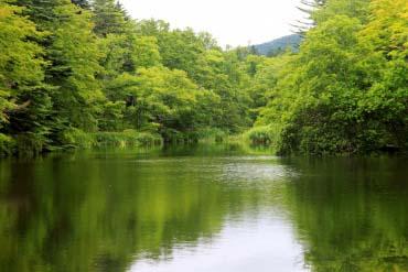 雲場池(輕井澤)