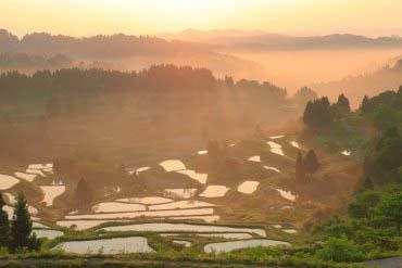 Hoshitoge no Tanada (Rice Terrace)(Niigata)