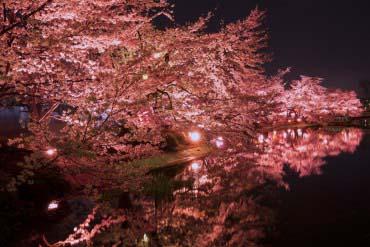 臥竜公園(長野)
