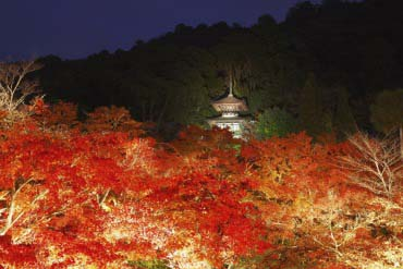 Eikando Zenrinji Temple(Kyoto)