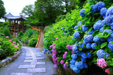 善峯寺(京都)