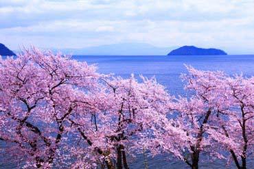 Kaizu Osaki(Shiga & Lake Biwa )