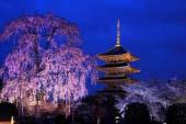 Touji Temple