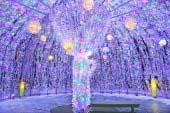 Illumination of Toyako Hot Springs