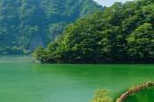 豊根みどり湖
